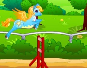 Pony race with hurdles